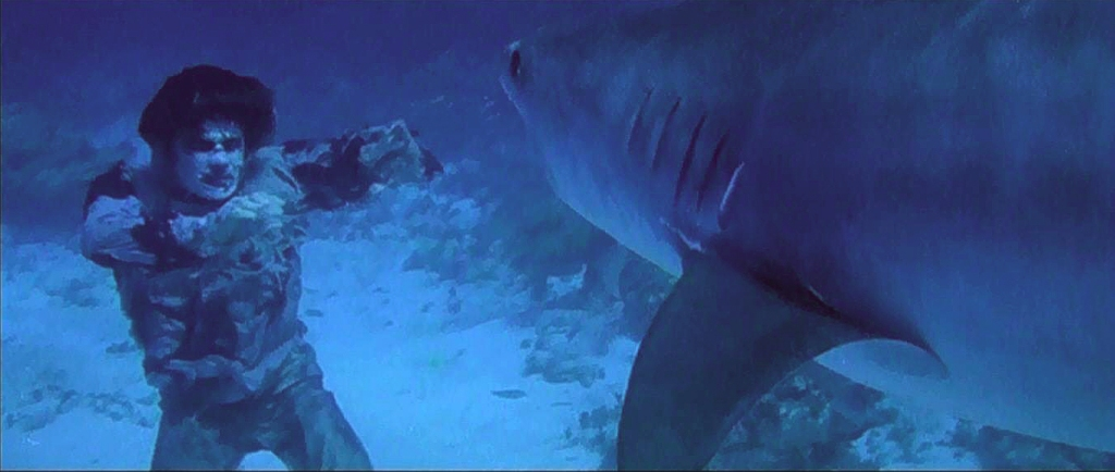 Shark vs_Zombie 1